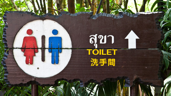 Approaching the Southeast Asian Toilet With Caution